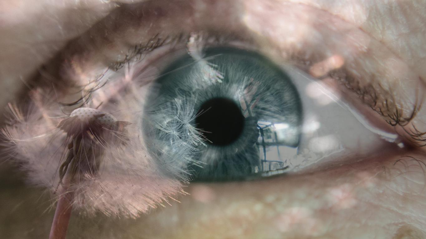L'oeil et les allergies saisonnières